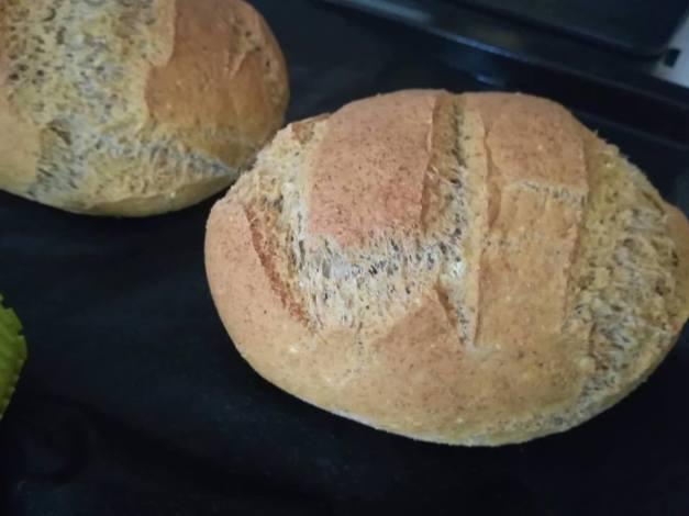 kenyér új
