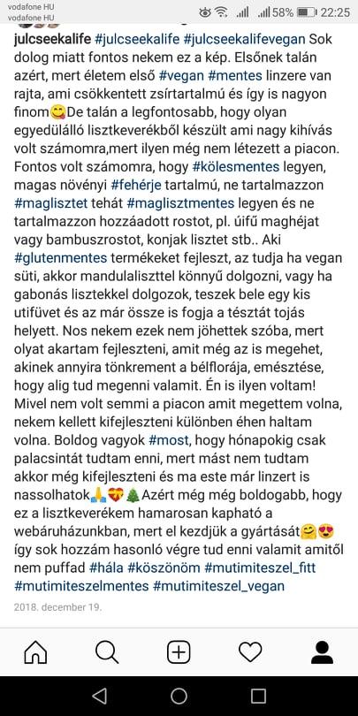 vegan rostmentes linzer 3